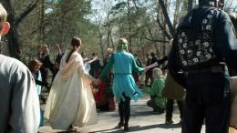 Гуляли на поляне эльф, колдун и рыцарь.