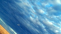 РОСТО. Авиаклуб. Прыжки с парашютом.