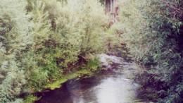 Верхняя Тунгуска