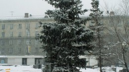 Елочка новогодняя-мартовская