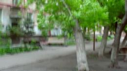 Падающее дерево