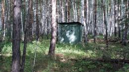 Туалет для грибников