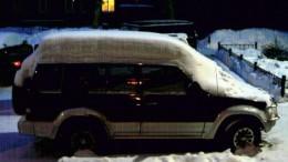 Хамство прикрытое снегом