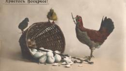 Пасхальные цыплята.