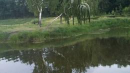 Озеро у Старозагородной рощи