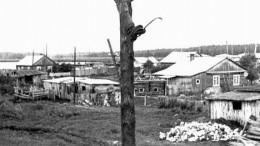 Телефонизация села
