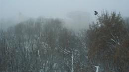 Омские морозы - 4. Река