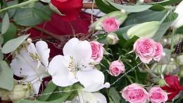 Флора 2004