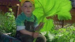 Под зелёным зонтиком