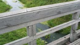 Артынка. Мост