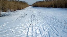 Лыжня на ленточном озере