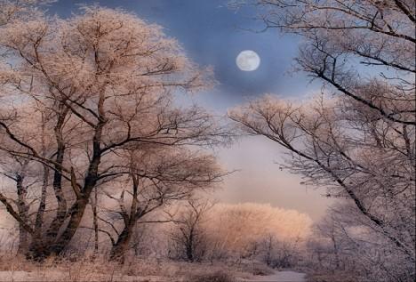 Омский пейзаж