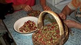 Лукошко ягодное