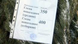 Цена сосны в Омске