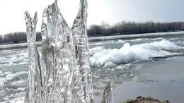 Последний оплот зимы