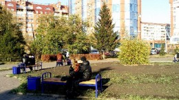 Популярные скамейки