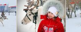 Покатаемся на оленях в Омске