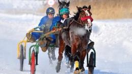Лошадиные бега