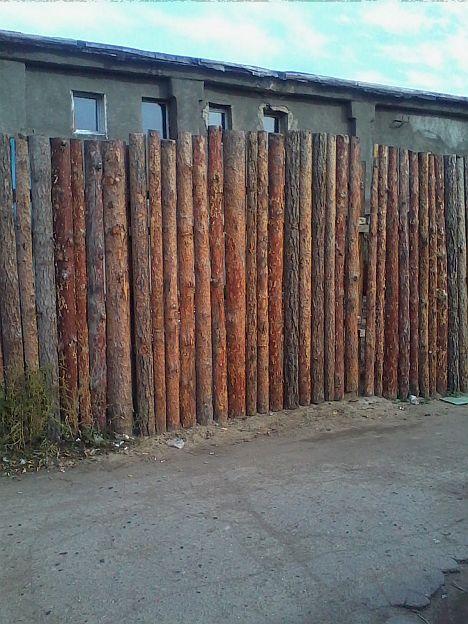 Омский палисад