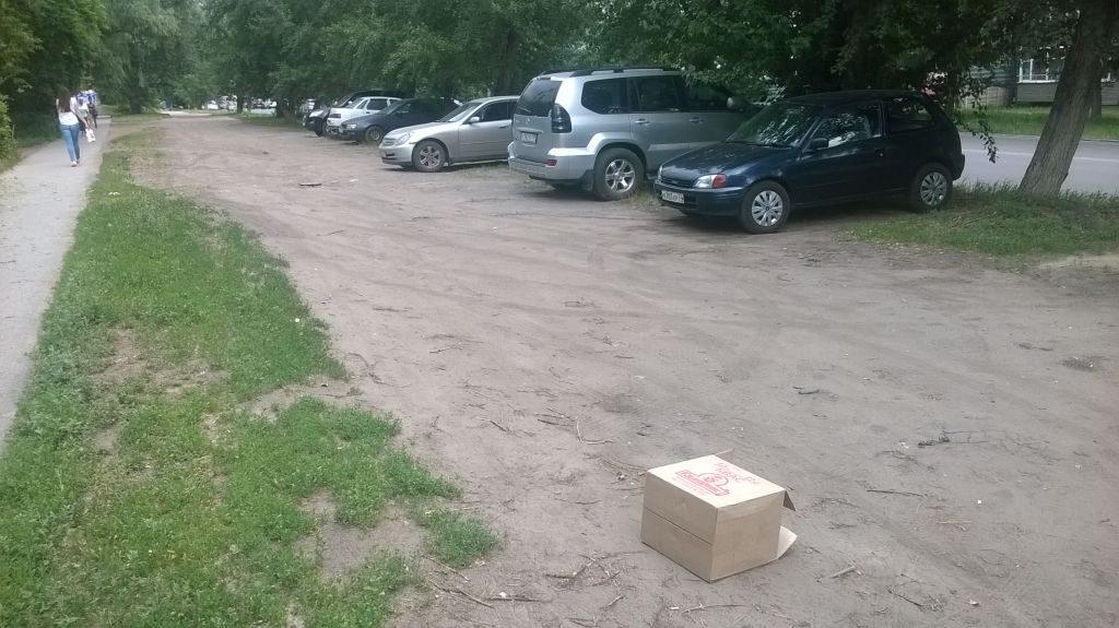 Типичное состояние газона и тротуара на муниципальной территории в Омске.