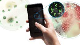 бактерии и вирусы на смартфоне