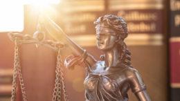 Отчет юриста